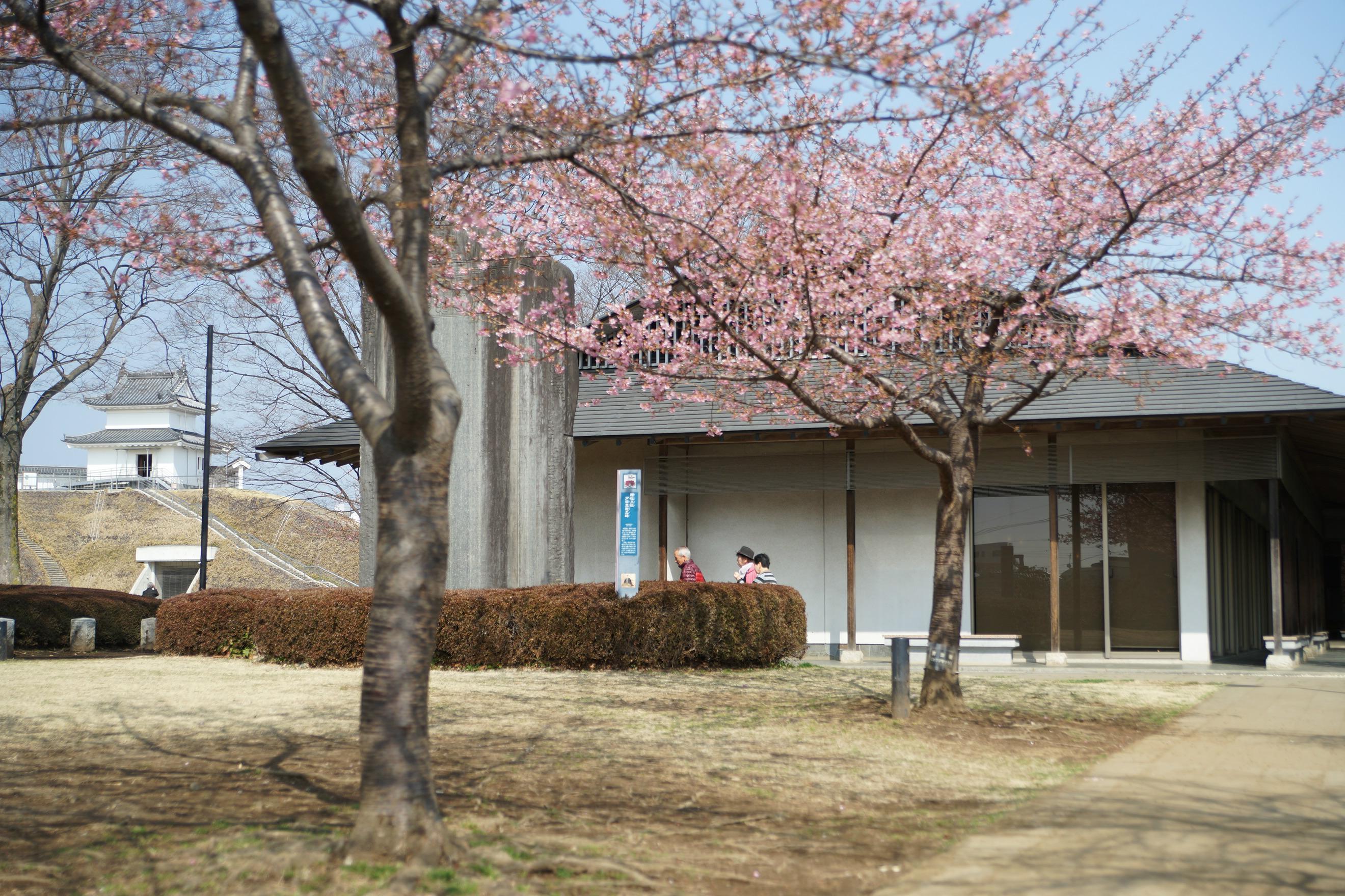 宇都宮城址公園2018年3月13日更新