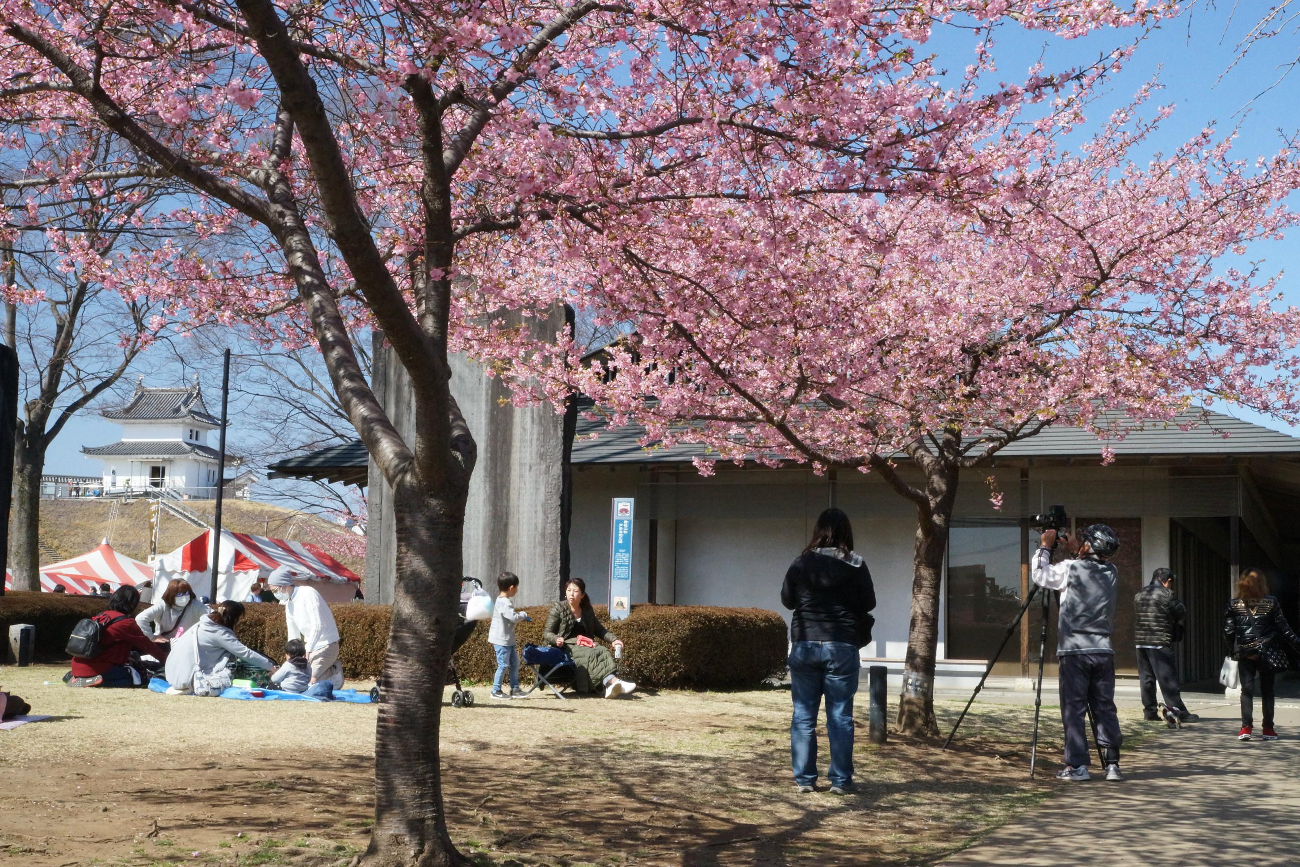 宇都宮城址公園2018年3月17日更新