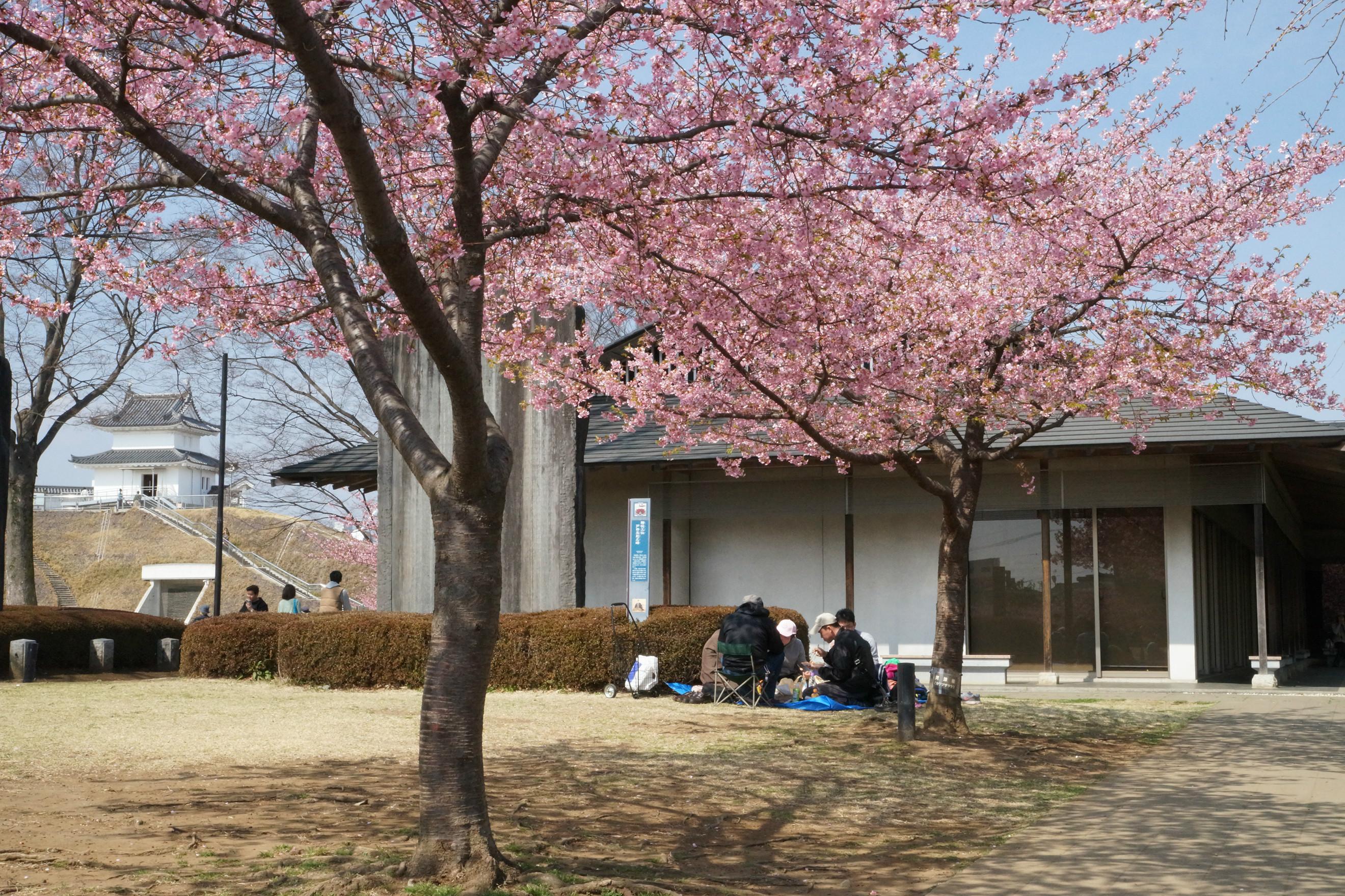 宇都宮城址公園2018年3月18日更新