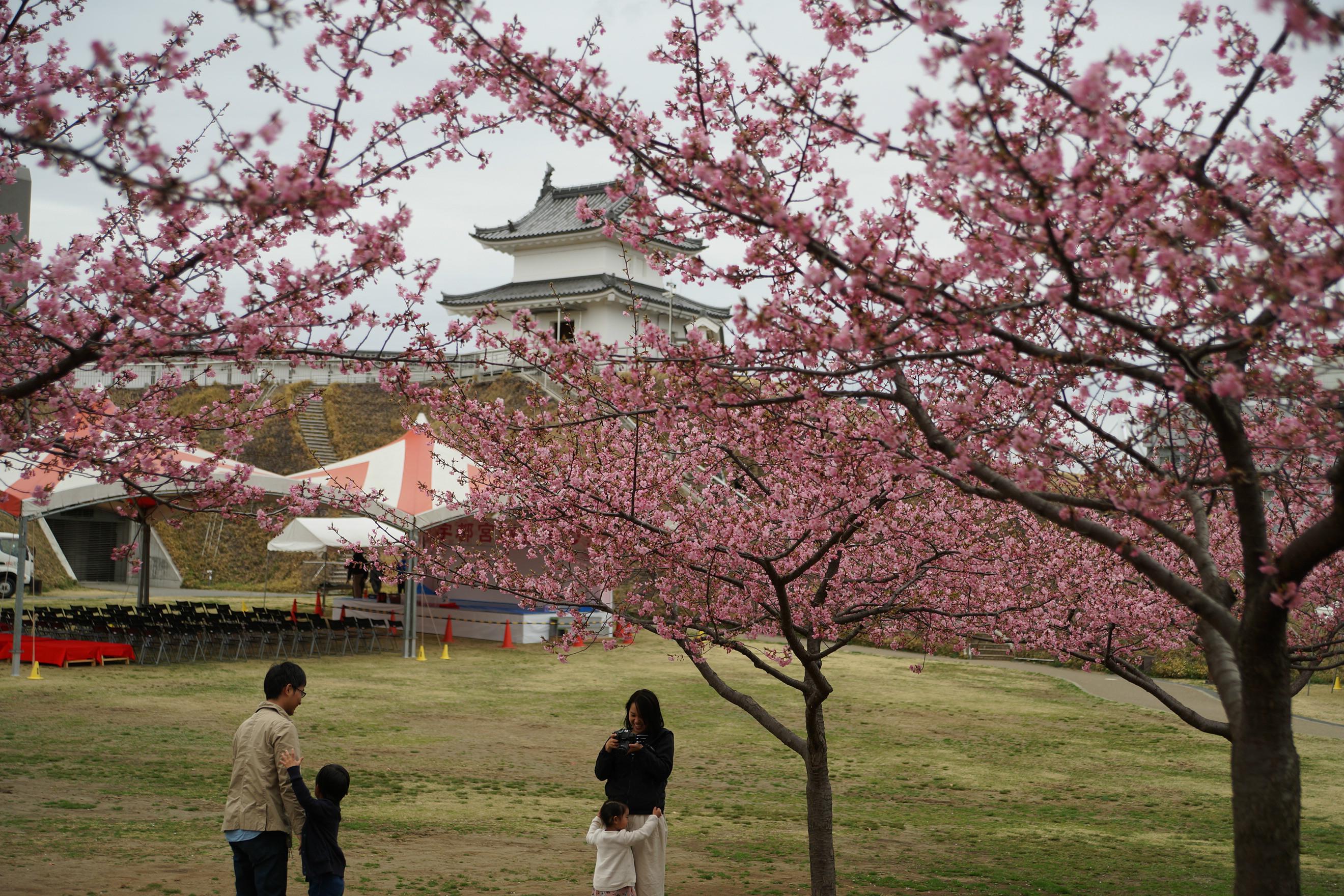 宇都宮城址公園2018年3月16日更新