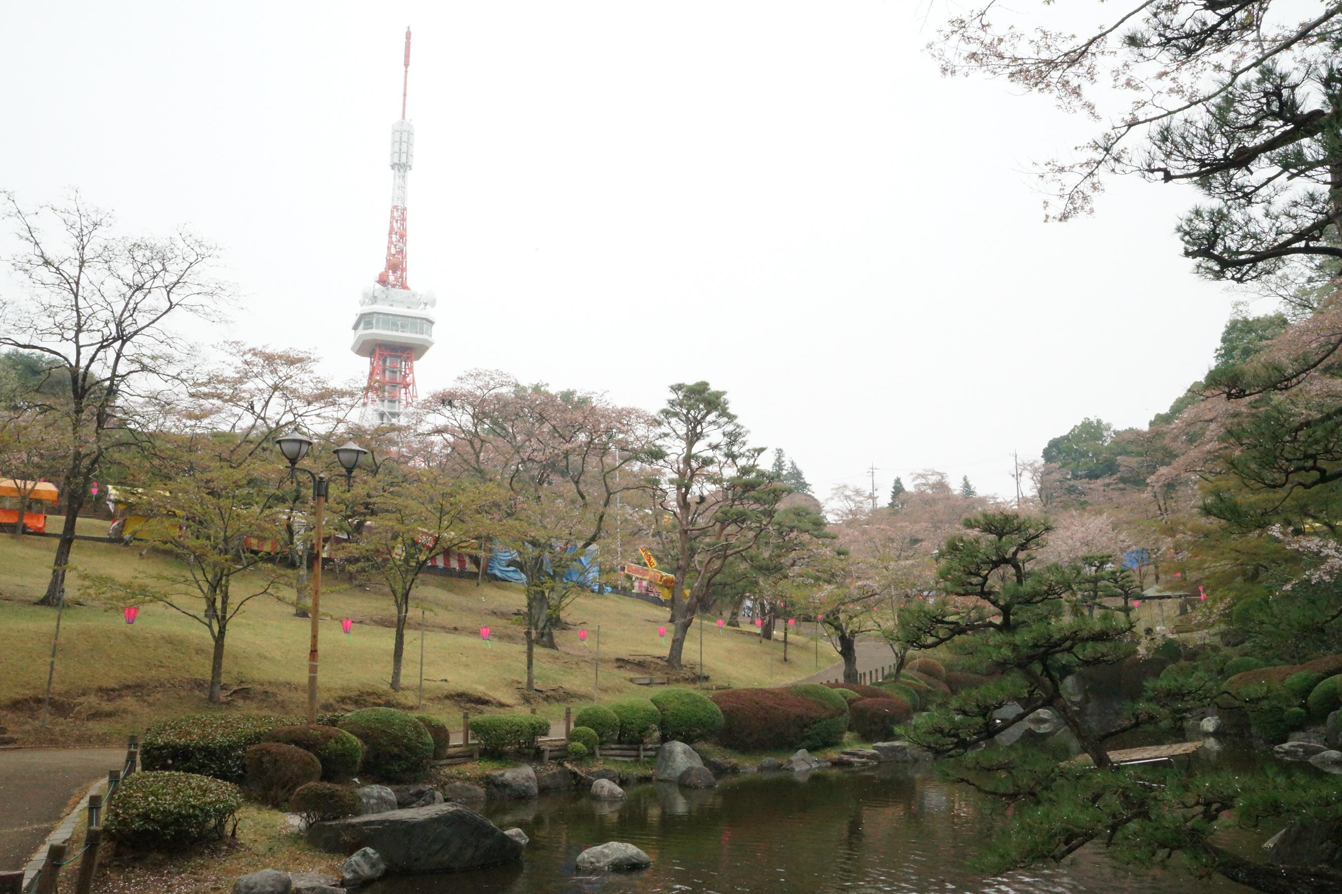 八幡山公園2018年4月6日更新