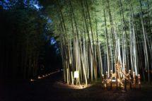 若山農場の竹灯り