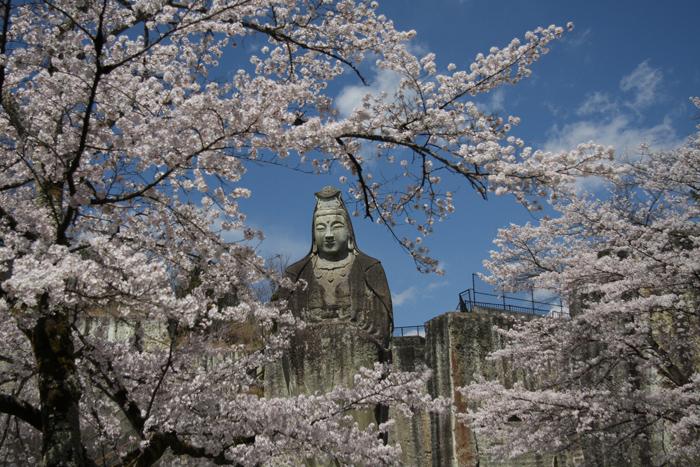 「桜と平和観音」 宇都宮市 新井義男さん