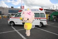 救急フェア画像